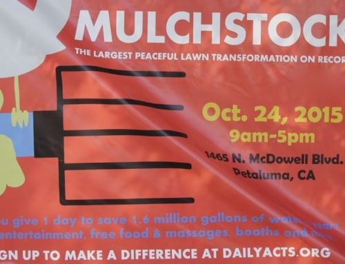 Mulchstock