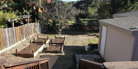 carl-backyard