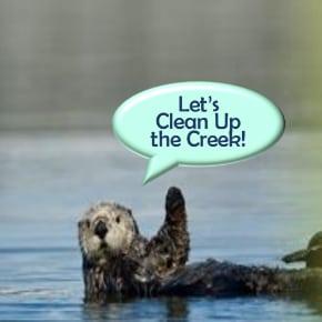 creek-cleanup