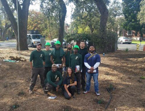 Santa Rosa Junior College: Lawns-to-Habitat