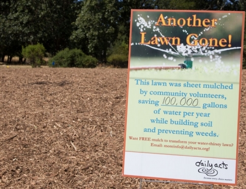 Foothills of Windsor Water-Wise Demonstration Garden – Phase 1