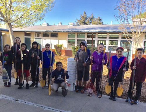McDowell Elementary School: Lawns-to-Habitat