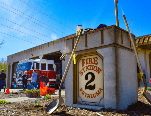 Petaluma Fire Station #2 Landscape Transformation