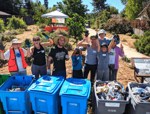 Cotati Community Creek Week Clean-Up