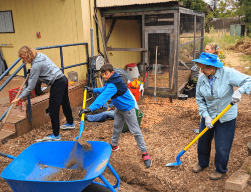 Live Oak Charter School Drip Irrigation Installation