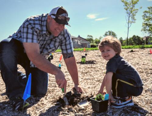 Radiant Rain Garden Planting & Irrigation at Old Vineyard Park