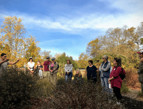 Landscaping with Fire in Mind Workshop